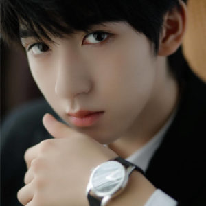 He Junlin (贺峻霖) Profile