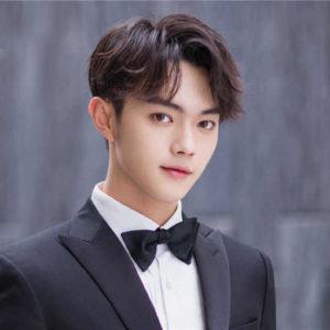 Xu Kai (许凯) Profile