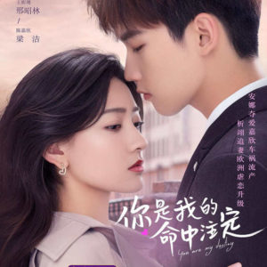 You Are My Destiny - Xing Zhaolin, Liang Jie